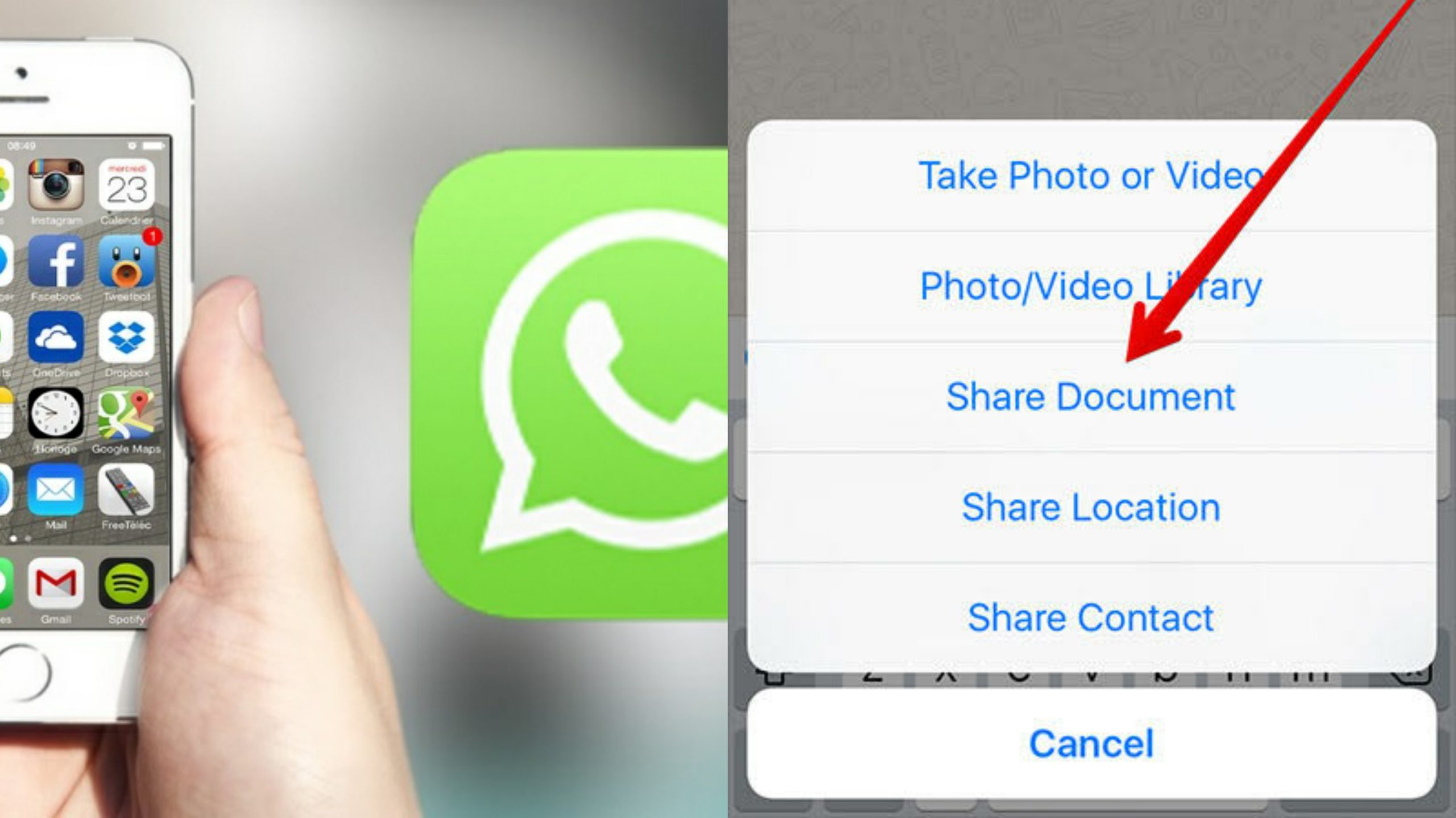 How to Transfer Documents on WhatsApp Using iPhone